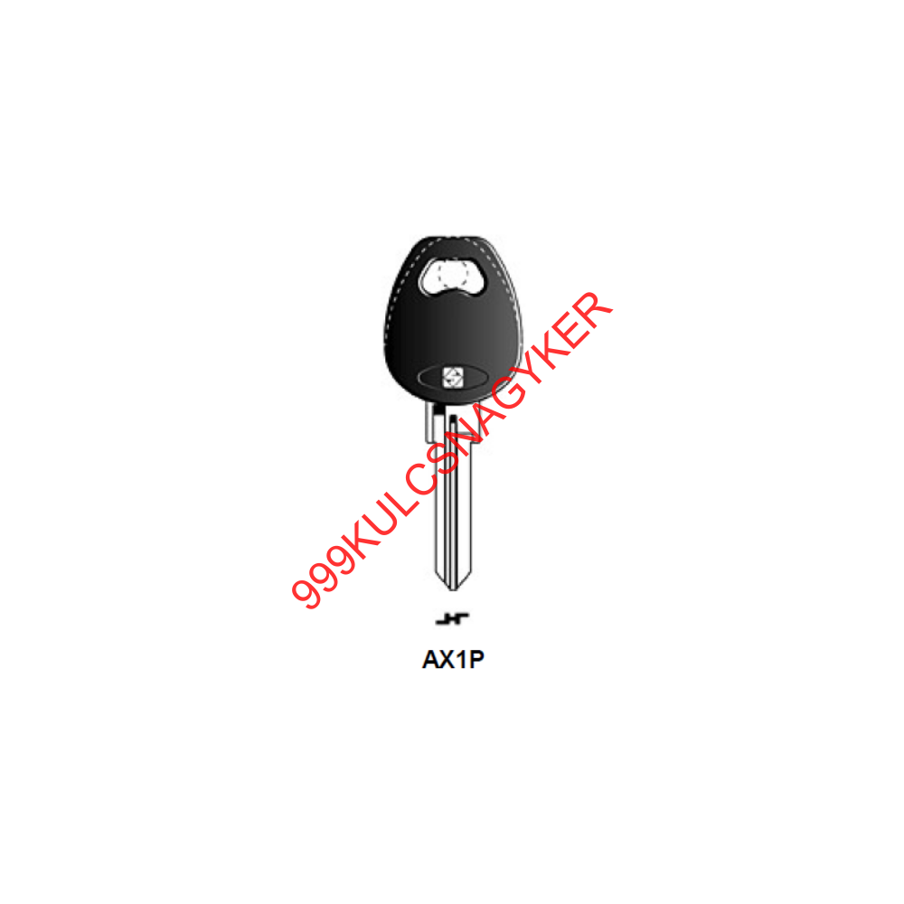 AX1P (JMA)